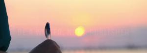 Woman writing at sunset